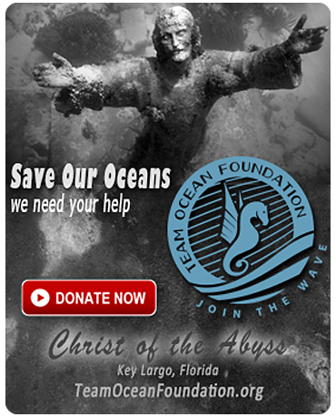 TeamOceanFoundation.org - Save Our Oceans